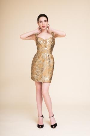 copy of BROCADE FABRIC DRESS